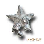 Hanger zilveren ster met kindervoetjes.